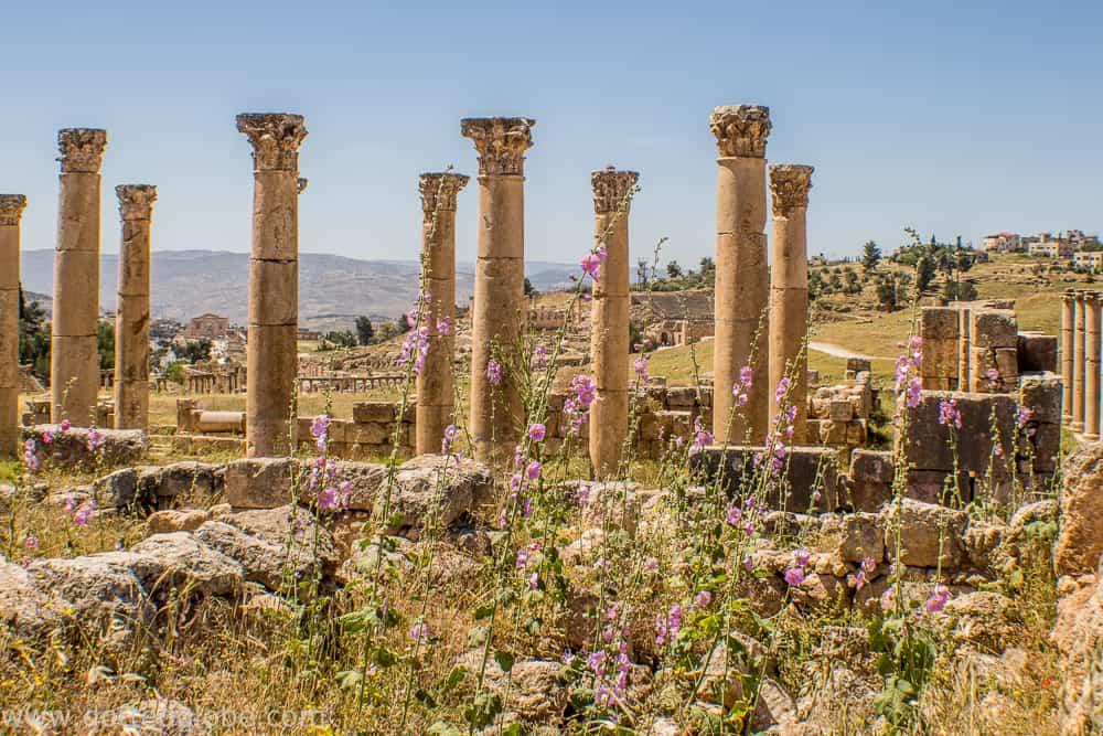 8 day jordan itinerary www.dottedglobe.com