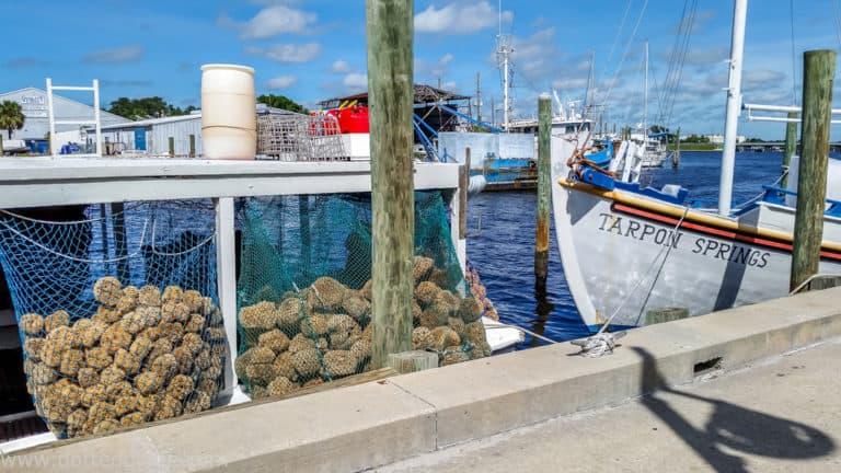 22 Delightful Things to do in Tarpon Springs, Florida