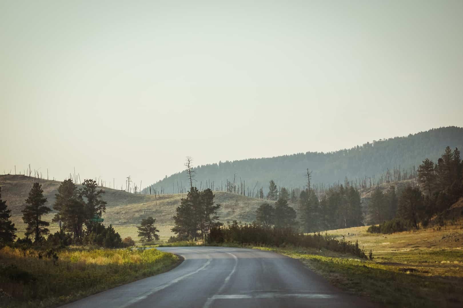 Enchanting views in Custer State Park, South Dakota