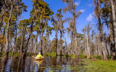 16 Best Things to do in Louisiana