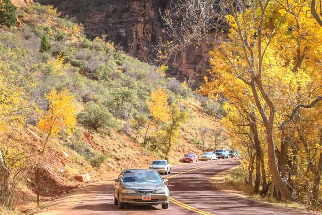 Zion National Park Scenic Drive in the fall