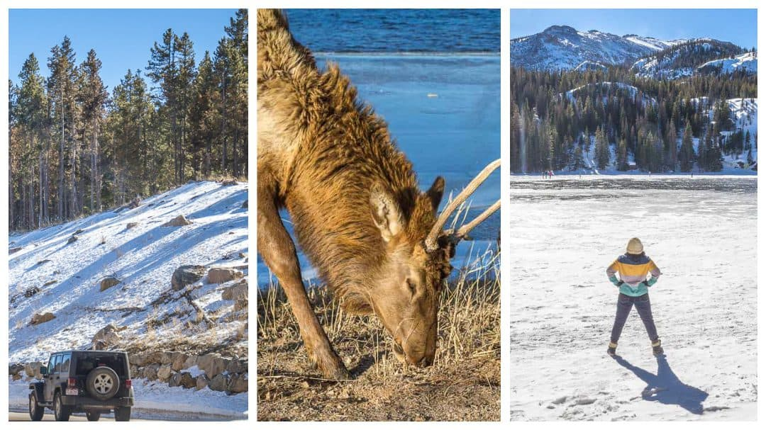 20 Delightful Things to do in Estes Park in the Winter: The Ultimate Rocky Mountain National Park Winter Guide