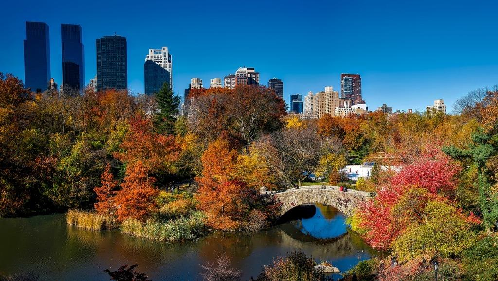 16 Best Things to do in New York in the Fall