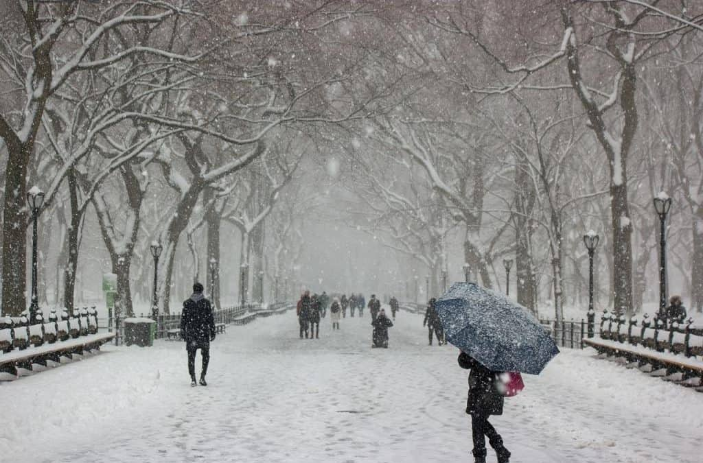 26 Best Things to do in New York in the winter