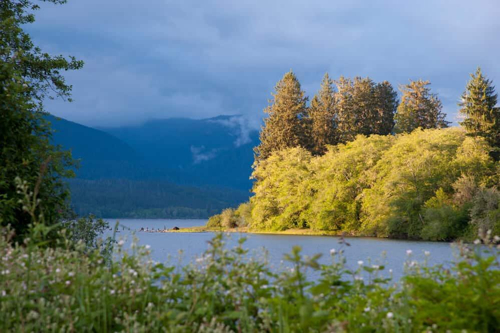 Lake Quinault in Washington