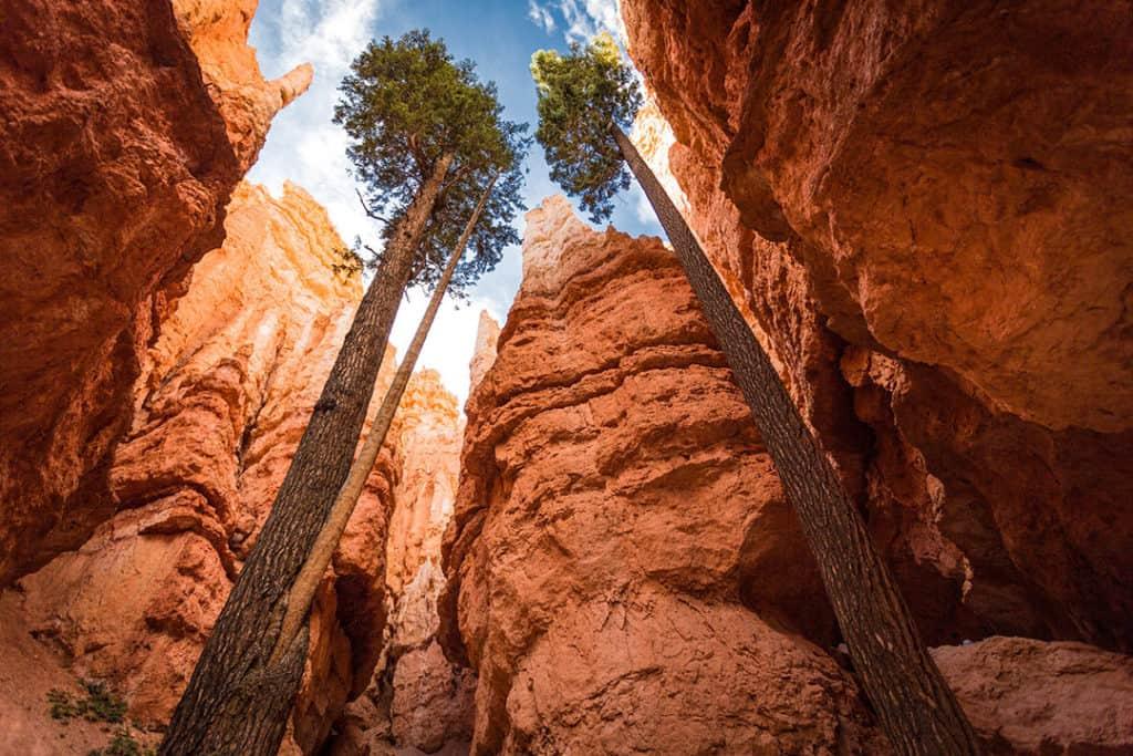 Bryce Canyon National Park_Navajo Loop