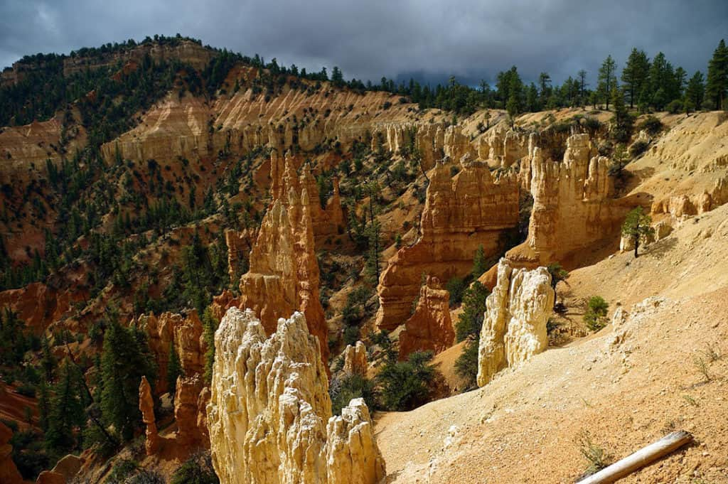 Bryce Canyon National Park_Rainbow point view