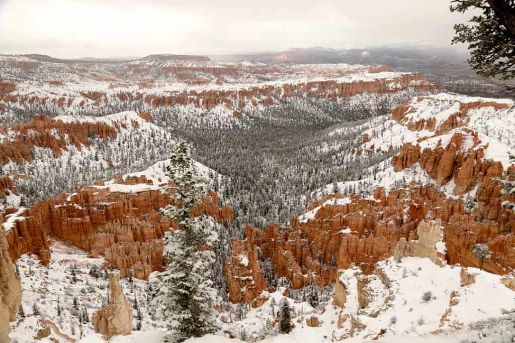 Bryce Canyon National Park covered in winter snow