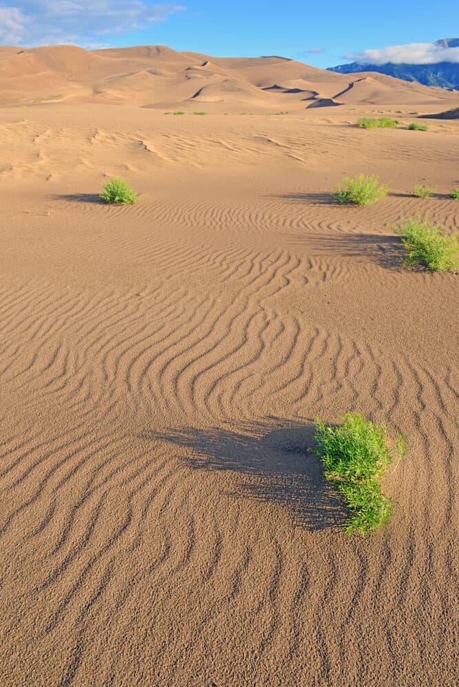 Dunes of Great Sand Dunes National Park, Colorado