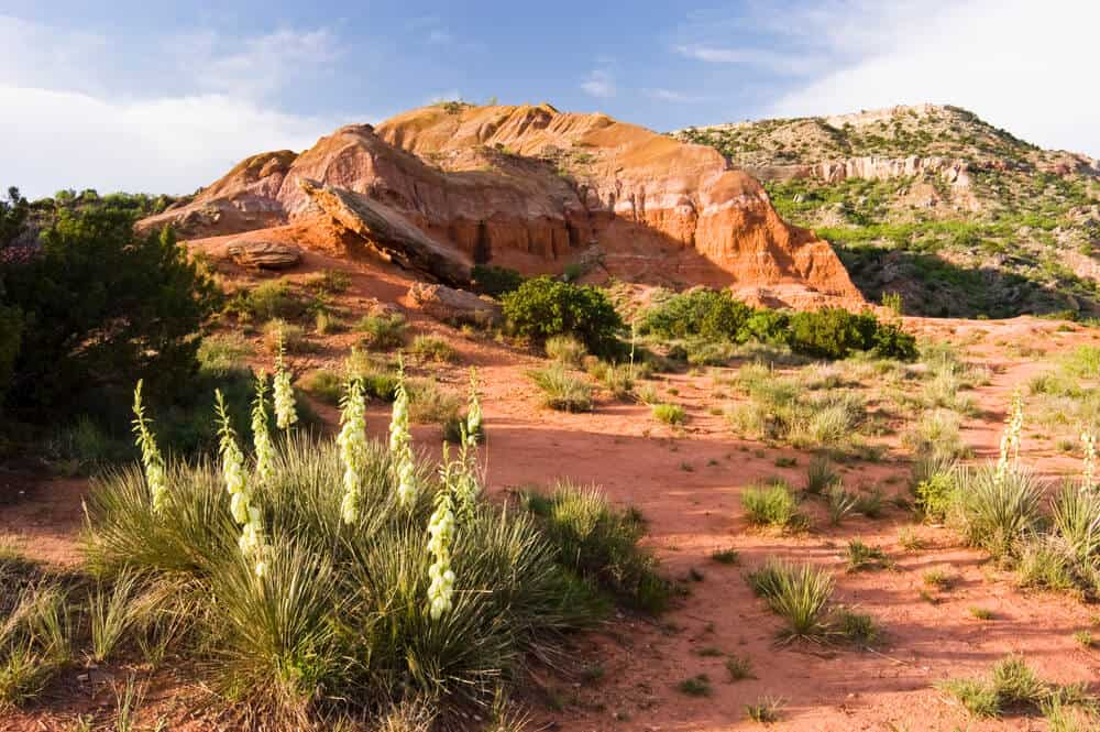 Palo Duro Canyon near Amarillo, Texas