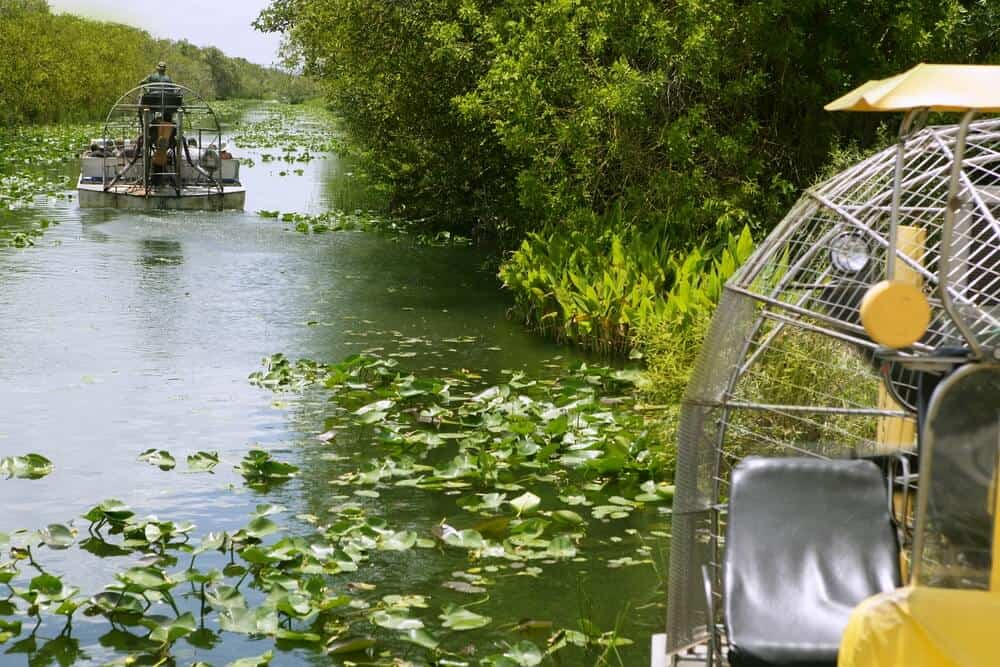 Airboat tour in Everglades National Park
