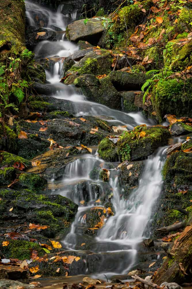 Mingo Falls in Great Smoky Mountains National Park in North Carolina