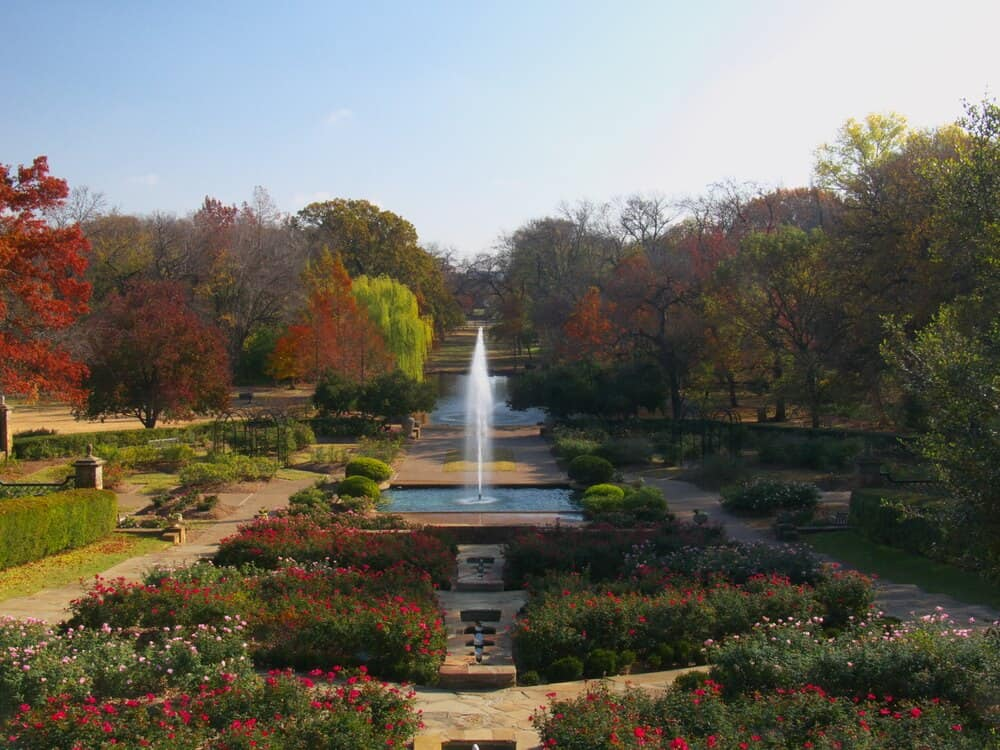 Rose garden in Fort Worth Botanic Gardens, Texas
