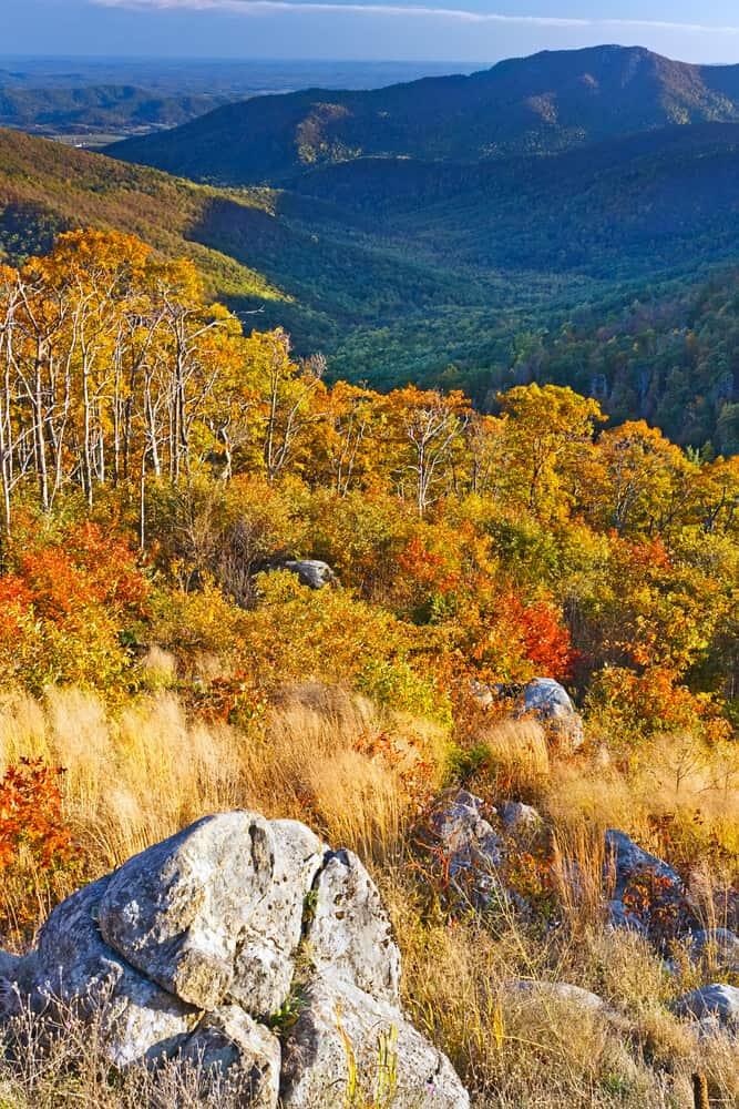 Shenandoah National Park in Fall, Virginia