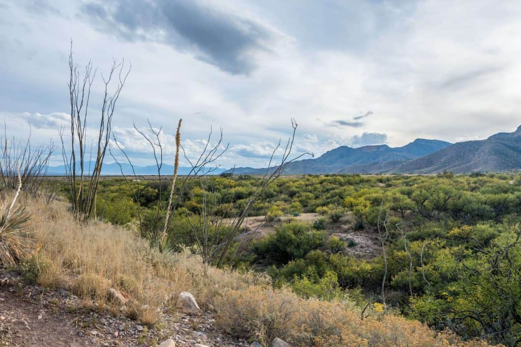 An overlooking view of Kartchner Caverns National Park, Arizona