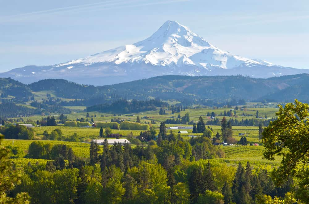 Mt. Hood and Hood River Valley