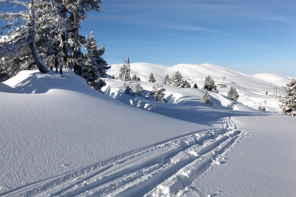 Tracks in the snow at Fairbanks, Alaska