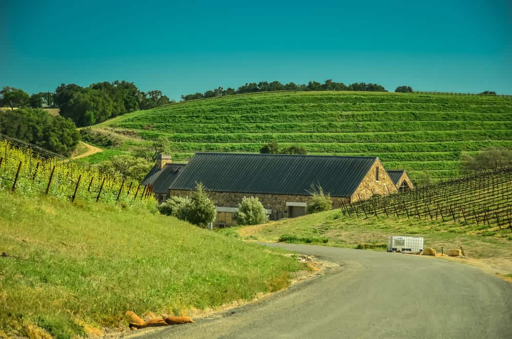 Winery and Vineyard near Paso Robles