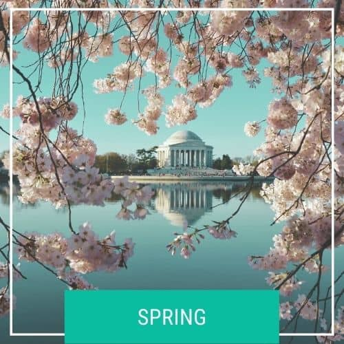 Dotted Globe USA Travel Blog Seasonal Travel Spring